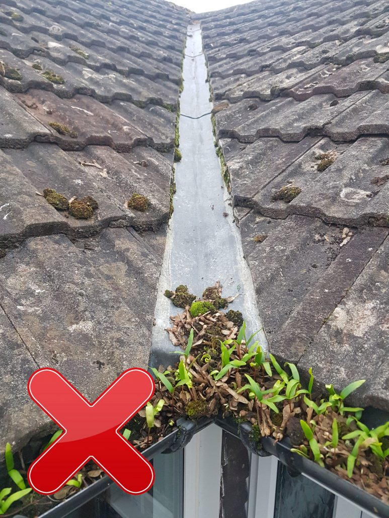 Mossoff Gutter Cleaning Hampshire Surrey Dorset